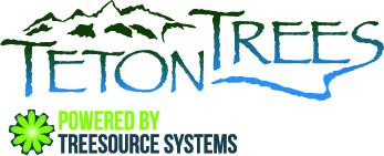 Teton Trees